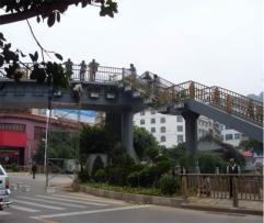 兴义市内环路改造立交桥绿化